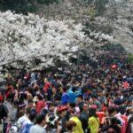 Wuhan University People
