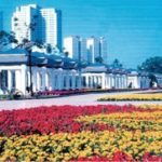 Shenyang City Science Park