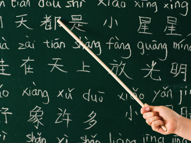 learn the chinese language